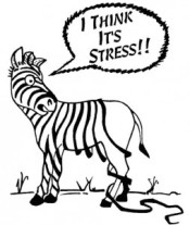 Feeling stressed out?